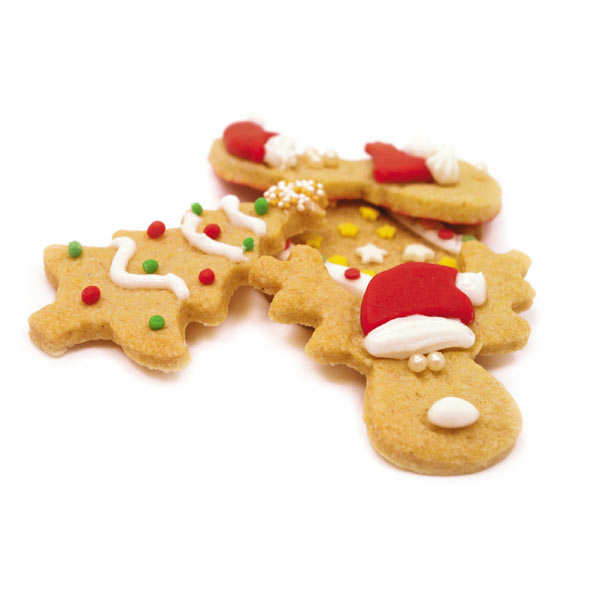 Christmas Biscuits Cutter Kit