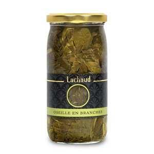 Lachaud - Sorrel Leaves