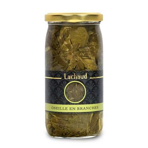 Lachaud - Oseille en branche