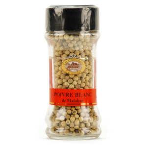 Le Comptoir Colonial - Poivre blanc Malabar en grains