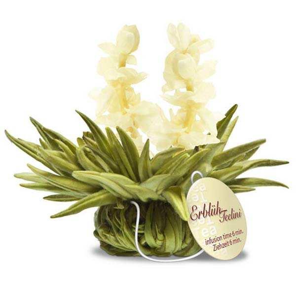 Fleurs de thé avec ficelle Tealini Ciel de Jasmin