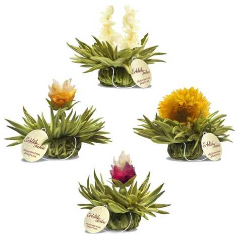 Creano - Lot découverte Fleurs de thé avec ficelle Tealini ( par 4)