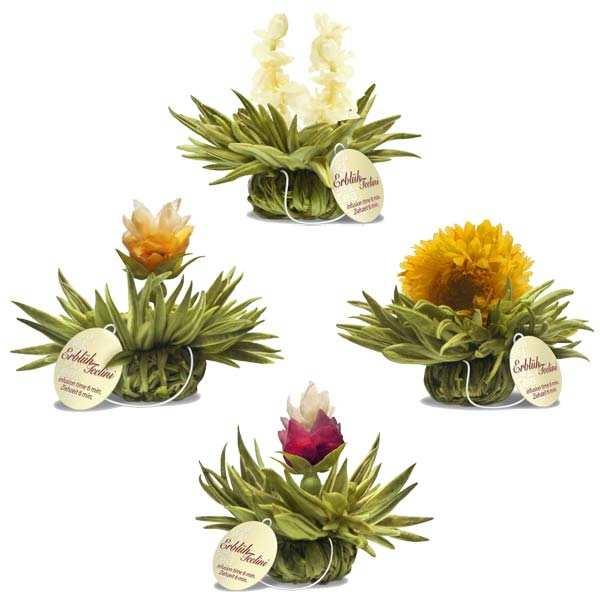 Lot découverte Fleurs de thé avec ficelle Tealini ( par 4)