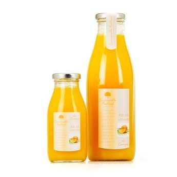 Emmanuelle Baillard - Pure Orange Juice