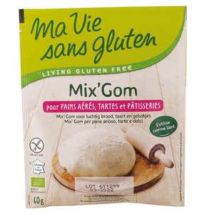 Ma vie sans gluten - Mix'Gom organic gluten-free bread and patisserie mix