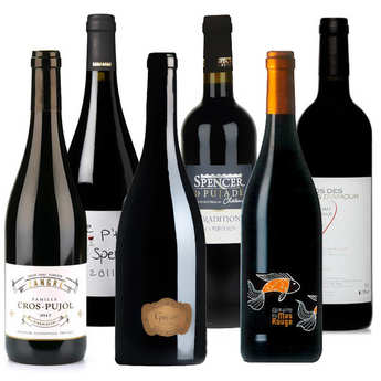 Château Grézan - Discovery offer - 6 red wines from Languedoc-Roussillon