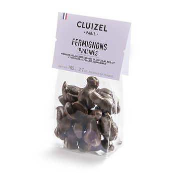 Michel Cluizel - Chocolate box - milk and dark chocolate