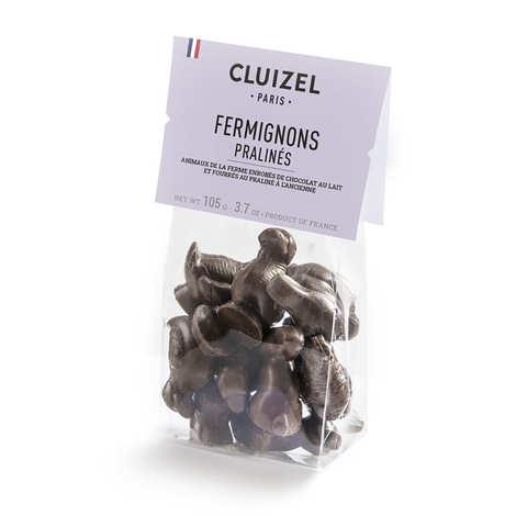 Michel Cluizel - Sachet d'animaux de la ferme en chocolat fourrés praliné