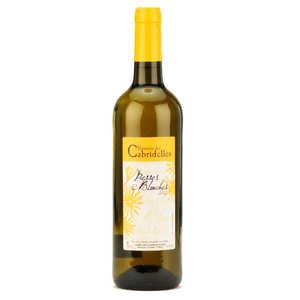 Domaine de Cabridelles - Pierres blanches - Pays d'oc white wine 12%