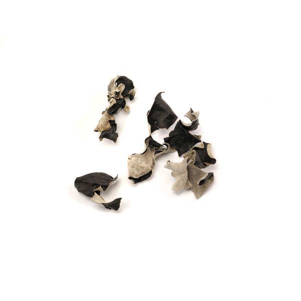 Champignons noirs séchés