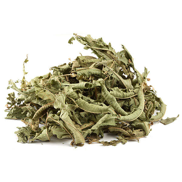 Verbena leaf infusion organic