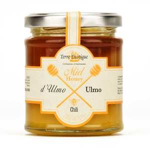 Terre Exotique - Ulmo honey from Chile