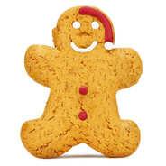 Image on food - Iced Gingerbread Santa Man
