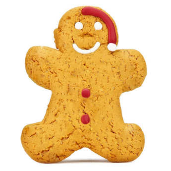 Image on food - Iced Gingerbread Santa Man