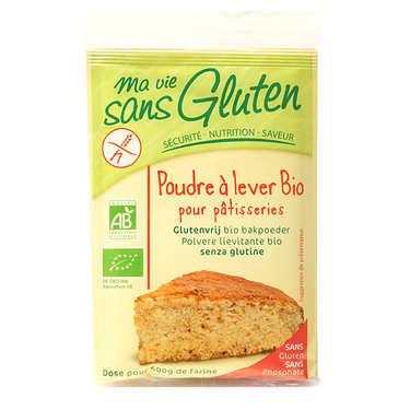Poudre à lever bio - sans gluten