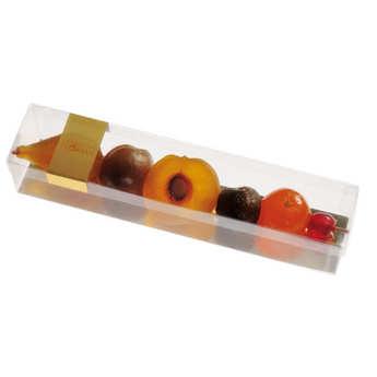 Florian - Brochette de fruits confits