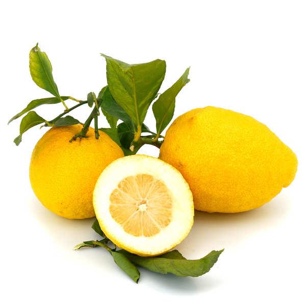 Citrons frais de Menton IGP