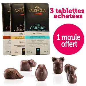 Valrhona - 3 chocolate bar Valrhona + Plastic forest chocolate mould