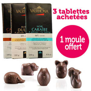 Valrhona - 3 tablettes Valrhona + 1 moule pour friture offert