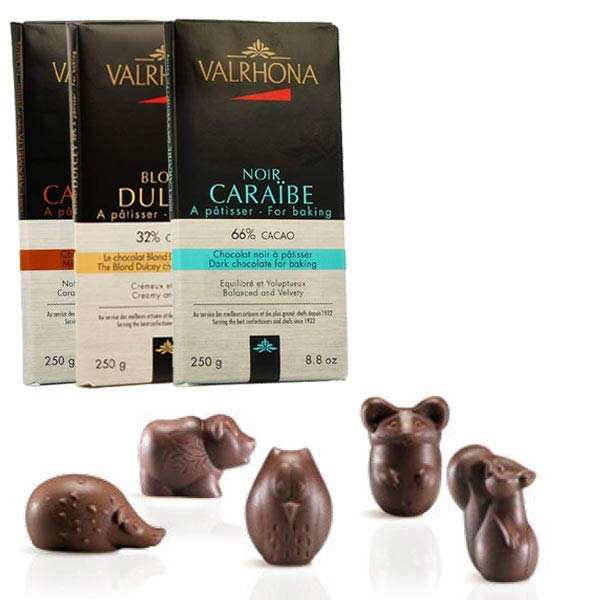 3 chocolate bar Valrhona + Plastic forest chocolate mould