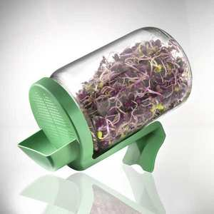 Germline - Germoir bocal en verre