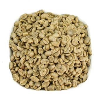 Destination - Café vert en grain bio