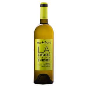Vignobles Brumont - Gros Manseng Sauvignon white - Vin de Pays of Côtes de Gascogne - 12%