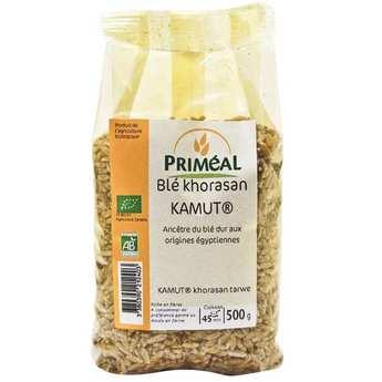 Priméal - Graines de blé Kamut ® bio (blé de khorasan)