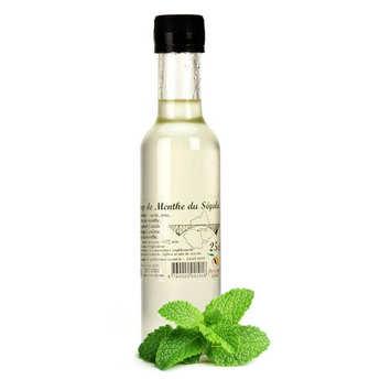 Artisan du fruit - Segala Mint Syrup