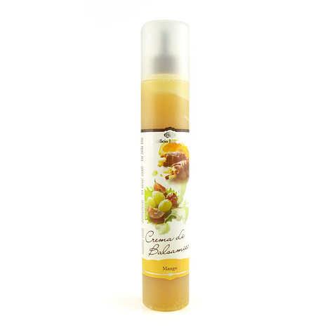 Acetificio Mengazzoli SNC - Crème de jus de mangue vinaigré