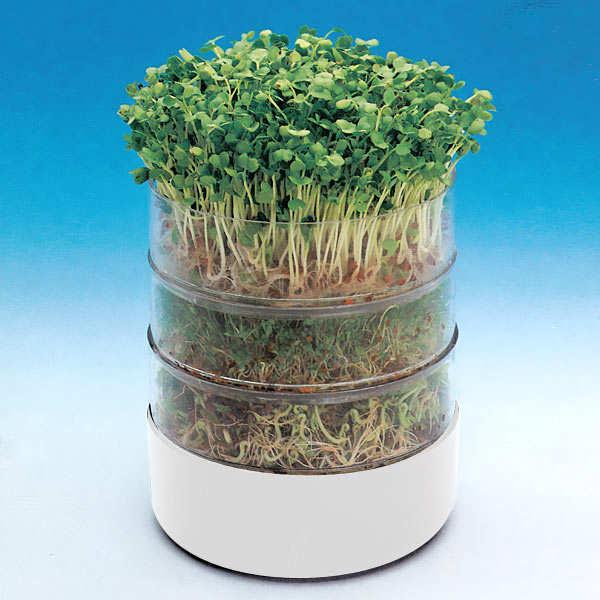 bioset germoir pour graines et semences. Black Bedroom Furniture Sets. Home Design Ideas