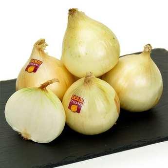 Origine Cévennes - Oignons doux des Cévennes AOP nouvelle récolte