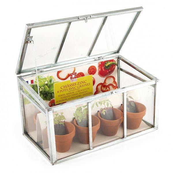 Vegetables Greenhouse