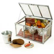 Radis et Capucine - Old Tomatoes Greenhouse
