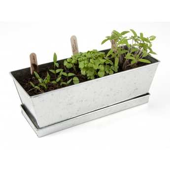 Radis et Capucine - Vegetables  planters