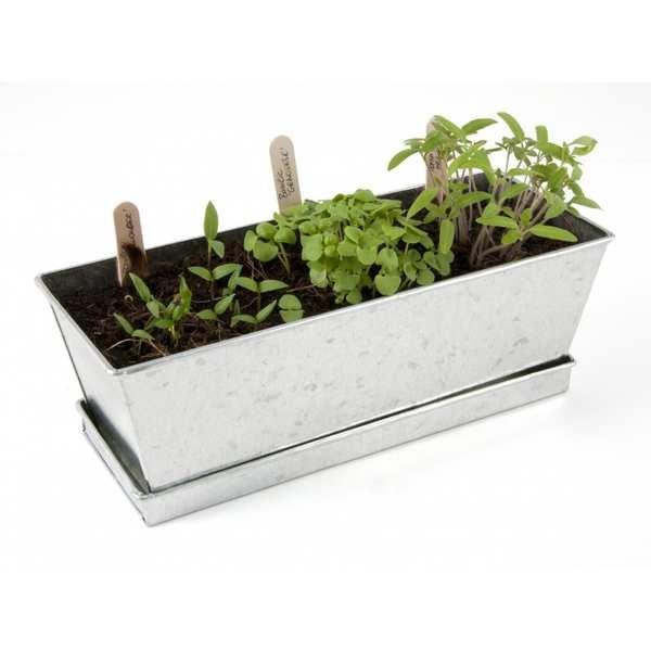 jardini re de petits l gumes croquer faire pousser radis et capucine. Black Bedroom Furniture Sets. Home Design Ideas