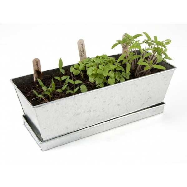Vegetables  planters