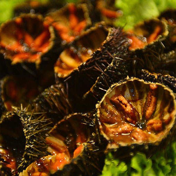 Corail d'oursin pasteurisé Olsen