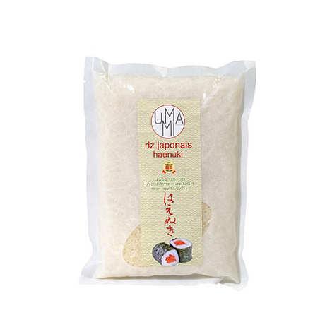 Umami Paris - Sushi Rice Haenuki