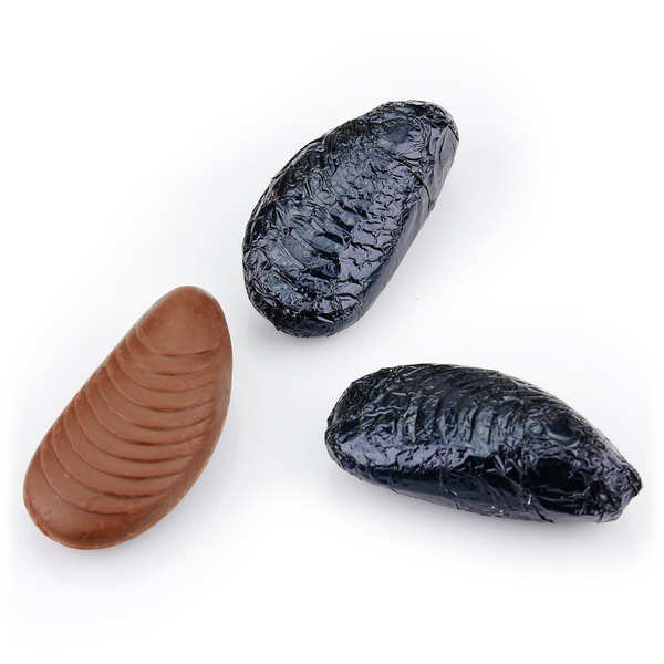 Moules praliné enrobées de chocolat