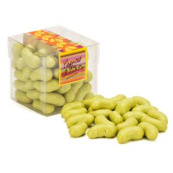 Les Caprices du Chocolatier - Haricots verts bonbon nougatine