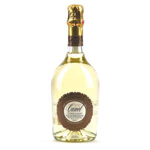 Astoria - Prosecco brut Casa Vittorino DOCG - vin pétillant italien - 11,5%