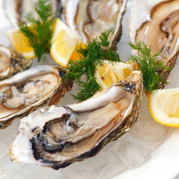 Huîtres fines de claires - Marennes Oléron - huîtres creuses numéro 1