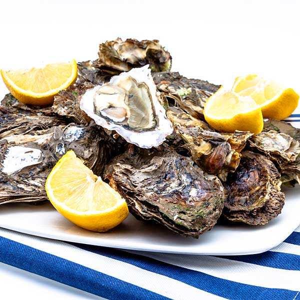 Huîtres fines de claires - Marennes Oléron - huîtres creuses numéro 4