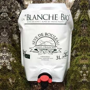 La Blanche Bio - organic Fresh birch sap from Alpes de Haute Provence
