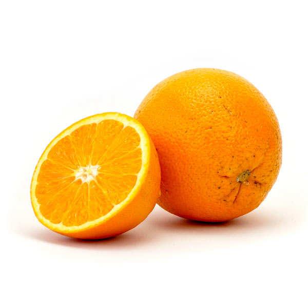 Oranges fraîches variété Navel New Hall du Portugal