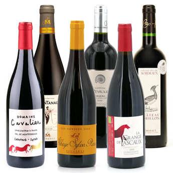 - Offre découverte Plaisir - 6 vins rouges bio