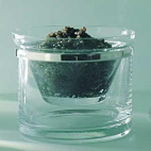 Sturia - Service à caviar cerclé Ercuis