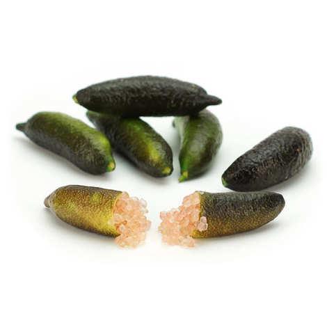 Agrumes Bachès - Long Finger Limes