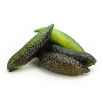 - Fresh Finger Limes